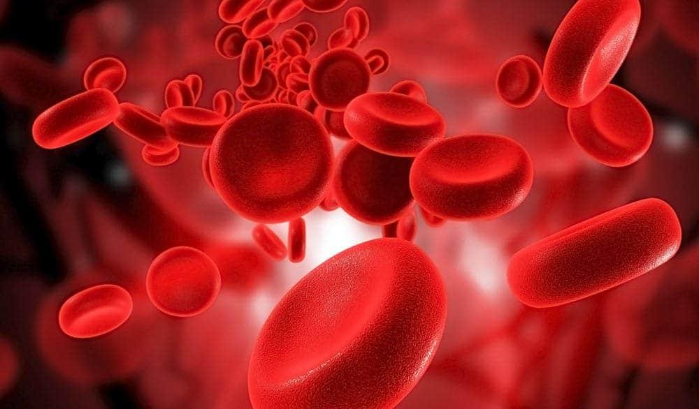 как питаться по группам крови